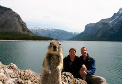 2009squirrel-photo-bomb